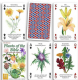 Plants of the Bible set of 52 playing cards (+ jokers)    (hpc)